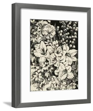 Black and White Drawing of Lily of the Valley with Daffodils--Framed Art Print