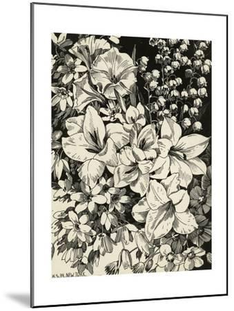 Black and White Drawing of Lily of the Valley with Daffodils--Mounted Art Print