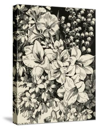 Black and White Drawing of Lily of the Valley with Daffodils--Stretched Canvas Print