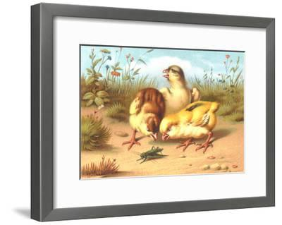 Pesky Chicks with Grasshopper--Framed Art Print