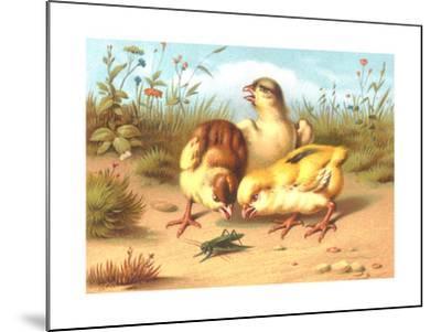 Pesky Chicks with Grasshopper--Mounted Art Print