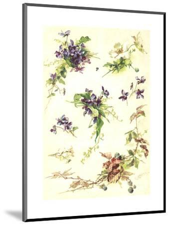 Blue Violets and Blackberry Branches--Mounted Art Print