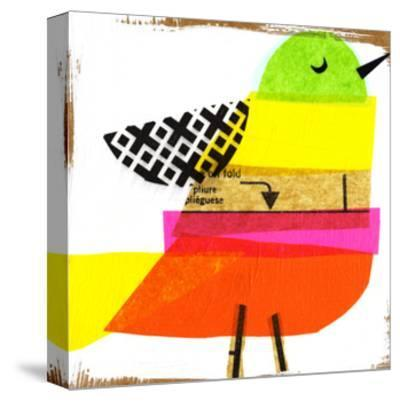 Collage of Colorful Bird--Stretched Canvas Print