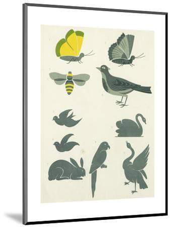 Graphic Winged Insects and Birds--Mounted Art Print