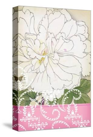White Frilly Flower with Leafy Swirls and Pink Border--Stretched Canvas Print