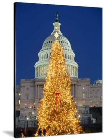 View of the National Christmas Tree Standing Before the Capitol-Richard Nowitz-Stretched Canvas Print