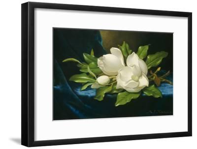 Giant Magnolias on a Blue Velvet Cloth, 1890-Martin Johnson Heade-Framed Giclee Print