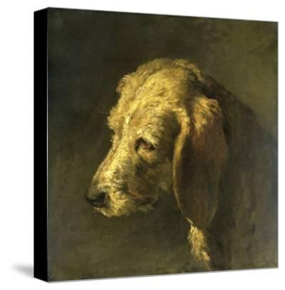 Head of a Dog, by Nicolas Toussaint Charlet, C. 1820-45-Nicolas Toussaint Charlet-Stretched Canvas Print
