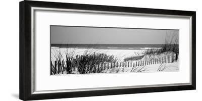 Fence on the Beach, Bon Secour National Wildlife Refuge, Gulf of Mexico, Bon Secour--Framed Photographic Print