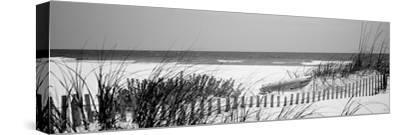 Fence on the Beach, Bon Secour National Wildlife Refuge, Gulf of Mexico, Bon Secour--Stretched Canvas Print