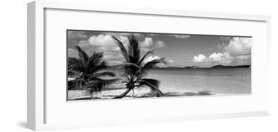 Salomon Beach Us Virgin Islands--Framed Photographic Print