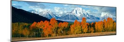 Trees in a Forest with Snowcapped Mountain Range in the Background, Teton Range, Oxbow Bend--Mounted Photographic Print