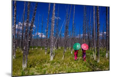 Two Girls with Parasols in Burnt Forest, Yellowstone National Park, Wyoming-Laura Grier-Mounted Photographic Print