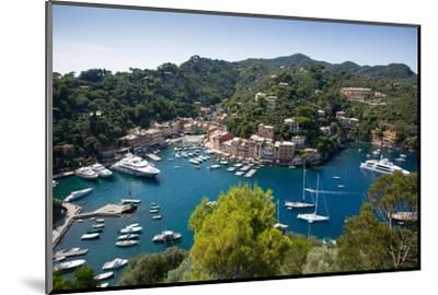 View of Harbour from Castle, Portofino, Genova (Genoa), Liguria, Italy, Europe-Frank Fell-Mounted Photographic Print