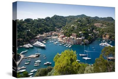 View of Harbour from Castle, Portofino, Genova (Genoa), Liguria, Italy, Europe-Frank Fell-Stretched Canvas Print