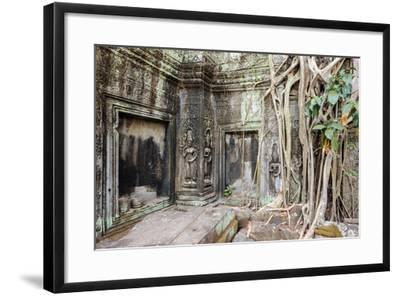 Tree Roots Growing on Ta Prohm Temple (Rajavihara) Ruins, Angkor, UNESCO World Heritage Site-Jason Langley-Framed Photographic Print
