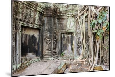 Tree Roots Growing on Ta Prohm Temple (Rajavihara) Ruins, Angkor, UNESCO World Heritage Site-Jason Langley-Mounted Photographic Print