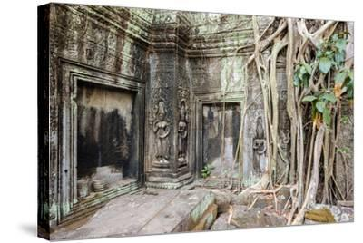 Tree Roots Growing on Ta Prohm Temple (Rajavihara) Ruins, Angkor, UNESCO World Heritage Site-Jason Langley-Stretched Canvas Print