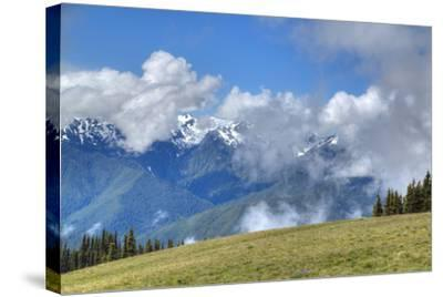 Hurricane Ridge, Olympic National Park, UNESCO World Heritage Site-Richard Maschmeyer-Stretched Canvas Print