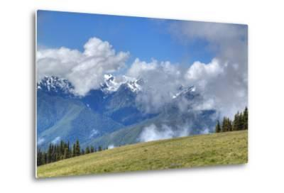 Hurricane Ridge, Olympic National Park, UNESCO World Heritage Site-Richard Maschmeyer-Metal Print