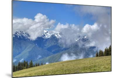 Hurricane Ridge, Olympic National Park, UNESCO World Heritage Site-Richard Maschmeyer-Mounted Photographic Print