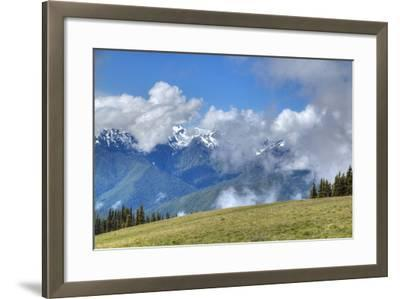 Hurricane Ridge, Olympic National Park, UNESCO World Heritage Site-Richard Maschmeyer-Framed Photographic Print