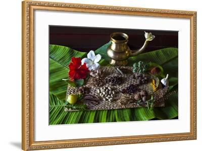 Different Indian Spices on Display at Swaswara, Karnataka, India, Asia-Thomas L-Framed Photographic Print