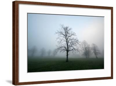 Misty Dawn, Victoria Park, Bristol, England, United Kingdom, Europe-Bill Ward-Framed Photographic Print