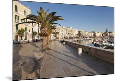 Promenade at the Harbour, Old Town, Trani, Le Murge, Barletta-Andria-Trani District-Markus Lange-Mounted Photographic Print