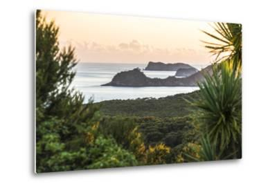 Bay of Islands Coastline at Sunrise, Seen from Russell, Northland Region, North Island, New Zealand-Matthew Williams-Ellis-Metal Print