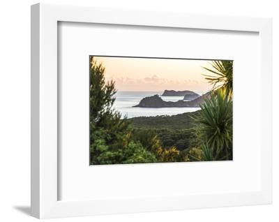 Bay of Islands Coastline at Sunrise, Seen from Russell, Northland Region, North Island, New Zealand-Matthew Williams-Ellis-Framed Photographic Print