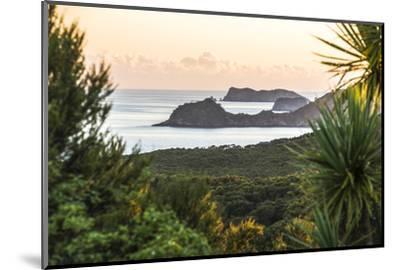 Bay of Islands Coastline at Sunrise, Seen from Russell, Northland Region, North Island, New Zealand-Matthew Williams-Ellis-Mounted Photographic Print