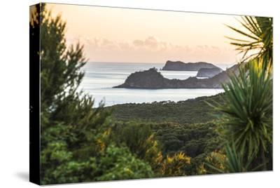 Bay of Islands Coastline at Sunrise, Seen from Russell, Northland Region, North Island, New Zealand-Matthew Williams-Ellis-Stretched Canvas Print