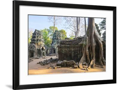 Ta Prohm Temple (Rajavihara), Angkor, UNESCO World Heritage Site, Siem Reap Province, Cambodia-Jason Langley-Framed Photographic Print