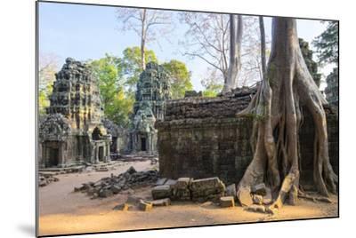 Ta Prohm Temple (Rajavihara), Angkor, UNESCO World Heritage Site, Siem Reap Province, Cambodia-Jason Langley-Mounted Photographic Print
