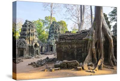 Ta Prohm Temple (Rajavihara), Angkor, UNESCO World Heritage Site, Siem Reap Province, Cambodia-Jason Langley-Stretched Canvas Print