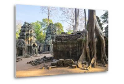 Ta Prohm Temple (Rajavihara), Angkor, UNESCO World Heritage Site, Siem Reap Province, Cambodia-Jason Langley-Metal Print