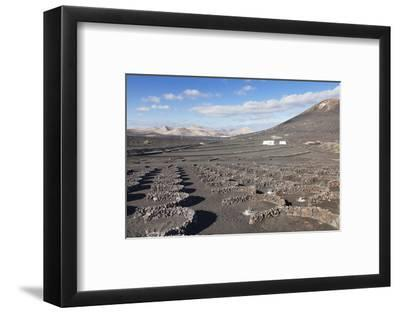 Wine Growing District La Geria, Lanzarote, Canary Islands, Spain, Atlantic, Europe-Markus Lange-Framed Photographic Print