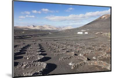 Wine Growing District La Geria, Lanzarote, Canary Islands, Spain, Atlantic, Europe-Markus Lange-Mounted Photographic Print