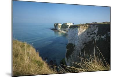 A Woman Looks Out at Old Harry Rocks at Studland Bay in Dorset on the Jurassic Coast-Alex Treadway-Mounted Photographic Print