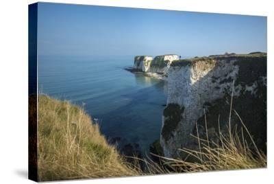 A Woman Looks Out at Old Harry Rocks at Studland Bay in Dorset on the Jurassic Coast-Alex Treadway-Stretched Canvas Print