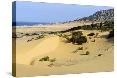 Nam Cuong Dunes, Phan Rang, Ninh Thuan Province, Vietnam, Indochina, Southeast Asia, Asia-Nathalie Cuvelier-Stretched Canvas Print
