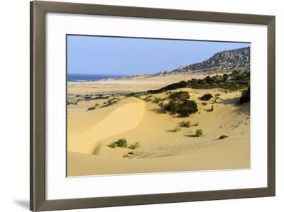 Nam Cuong Dunes, Phan Rang, Ninh Thuan Province, Vietnam, Indochina, Southeast Asia, Asia-Nathalie Cuvelier-Framed Photographic Print