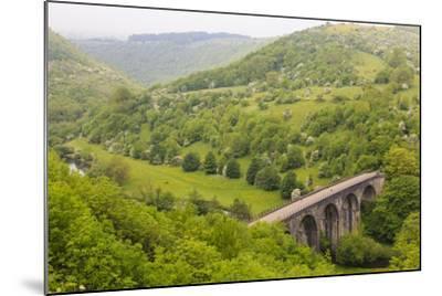 Monsal Trail Viaduct, Monsal Head, Monsal Dale, Former Rail Line, Trees in Full Leaf in Summer-Eleanor Scriven-Mounted Photographic Print