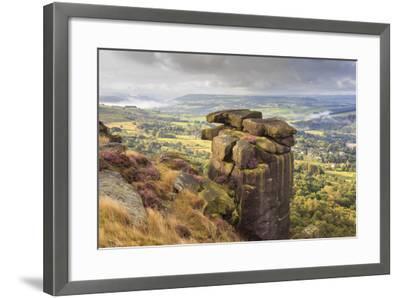 Curbar Edge, Summer Heather, View Towards Chatsworth, Peak District National Park, Derbyshire-Eleanor Scriven-Framed Photographic Print