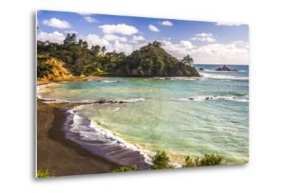 Sandy Beach on Tutukaka Coast, Northland Region, North Island, New Zealand, Pacific-Matthew Williams-Ellis-Metal Print