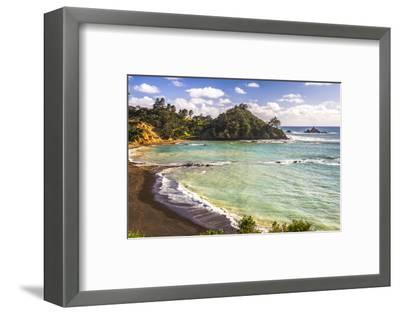 Sandy Beach on Tutukaka Coast, Northland Region, North Island, New Zealand, Pacific-Matthew Williams-Ellis-Framed Photographic Print