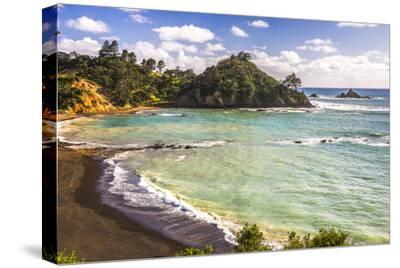 Sandy Beach on Tutukaka Coast, Northland Region, North Island, New Zealand, Pacific-Matthew Williams-Ellis-Stretched Canvas Print