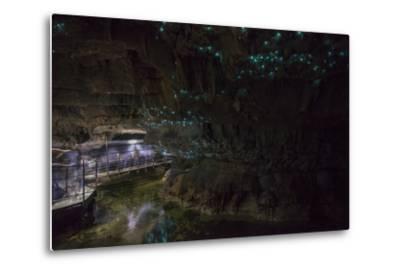 Glow Worms in Waitomo Caves, Waikato Region, North Island, New Zealand, Pacific-Matthew Williams-Ellis-Metal Print