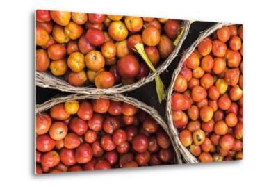 Tomatoes at Hpa an Morning Market, Kayin State (Karen State), Myanmar (Burma), Asia-Matthew Williams-Ellis-Metal Print